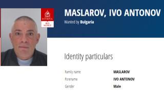 Интерпол издирва обвинения за поръчител на убийството на Станка Марангозова