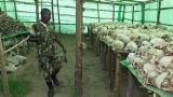 UK няма да екстрадира висш военен от Руанда