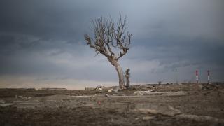 С $2,7 милиарда Япония превръща Фукушима в център за възобновяема енергия