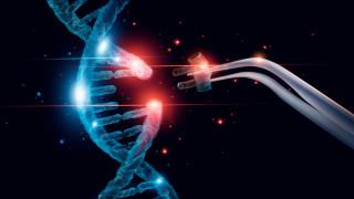 Великобритания иска генно да редактира добитък и храни