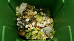 Тонове развалена храна за бежанци – на боклука