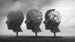 Каква е разликата между деменция и Алцхаймер