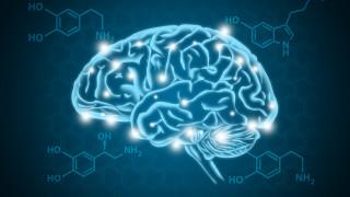 Инфекцията с COVID-19 уврежда кръвоносните съдове на мозъка