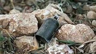 """Ръчна граната тип """"лимонка"""" откриха край Асеновград"""
