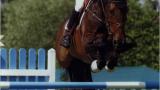 Среща на конния туризъм в Божурище