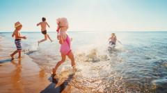 Какви опасности ни дебнат на плажа