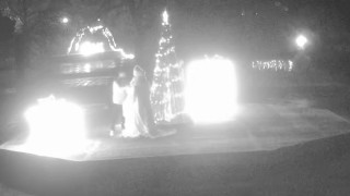Пиян вандал унищожи коледната украса в Тервел