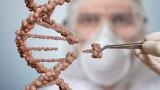 CSIRO, ДНК и как чрез нея можем да определим продължителността на живота