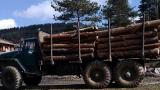 Задържаха 38 куб. метра незаконни дърва и три камиона