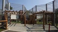 Как се е променил столичният зоопарк през годините?