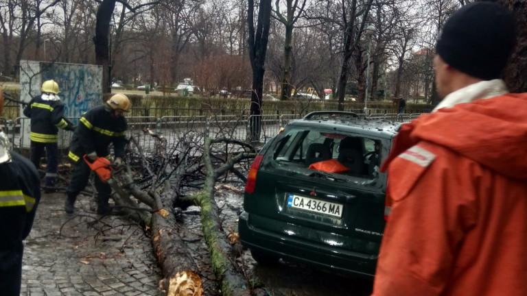 Силен вятър и дъжд в София доведоха до затруднения в