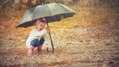 11 области в жълто заради дъжд
