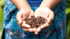 Любов от първата глътка кафе
