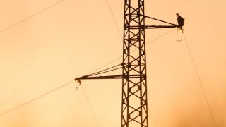 """Драстичен скок в цената на нощния ток с 67% иска ЧЕЗ; Нов обрат настъпи с небостъргача на """"Артекс"""""""