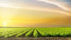 20 000 евро е максималната помощ за земеделските стопани