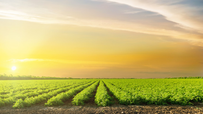 Максималната помощ, която националните органи по земеделие могат да отпускат