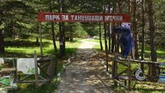 Жена е нападната от мечка в Белица