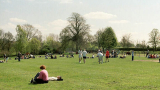 Започват проверки за състоянието на столичните паркове