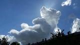Да помечтаеш в облаците (СНИМКИ)