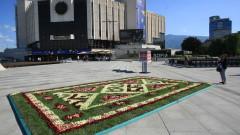Жив килим от български рози под звуците на Балканите