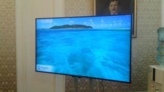 Ягоди и море за медиите в парламента вместо пленарна зала
