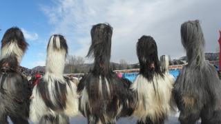 Хиляди кукери от цялата страна на традиционен фестивал в Симитли