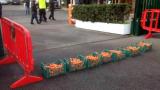 """Тифозите на Рома """"нахраниха"""" отбора с 50 кила моркови"""