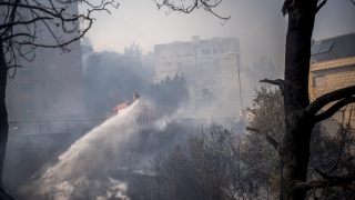 """Местен клон на """"Ал Кайда"""" пое отговорност за пожарите в Израел"""