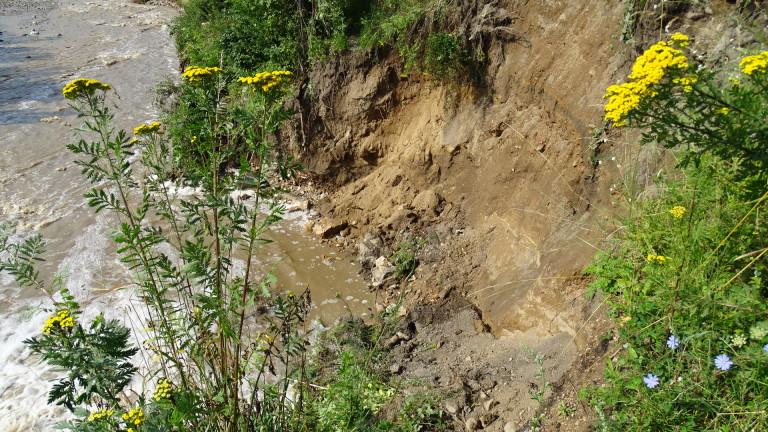 Мандра изпуснала суроватка във водите на река Черна