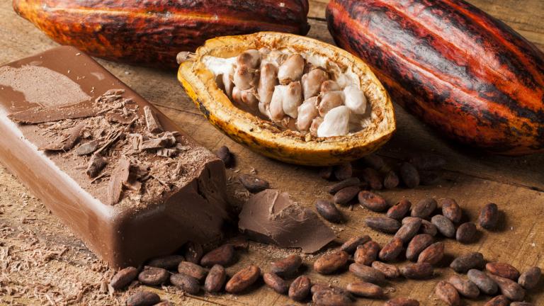 """Как """"опитомихме"""" какаото"""