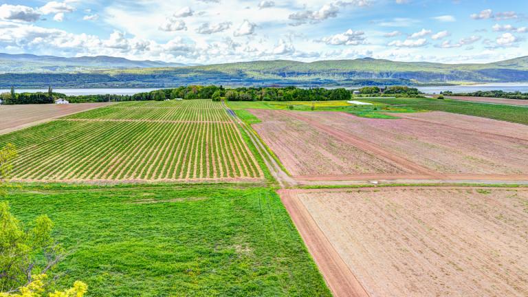 Един процент от фермите обработват 70% от земеделските земи в света