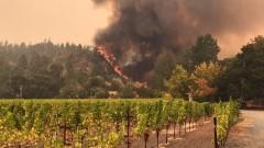 40 са вече жертвите на пожарите в Калифорния