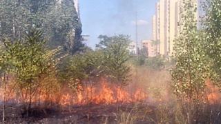 Подпалиха градинката до МВР болница