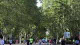 Коронавирус: Мадрид налага частични блокади