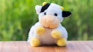 Плюшена крава е съмнителната пратка в съдебната палата