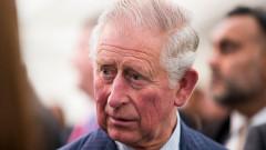 Имал ли е връзка принц Чарлз със сестрата на Даяна