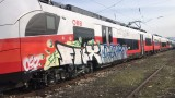 Вандали изрисуваха с графити чисто нов влак