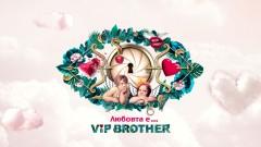 """Обявиха старта на """"любовния"""" VIP Brother"""