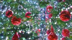 Лудогорец честити Рождество Христово на своите фенове