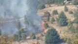 1/3 по-малко горски пожари у нас тази година