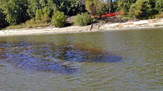 Покриват раздходи за нефтения разлив в Дунав