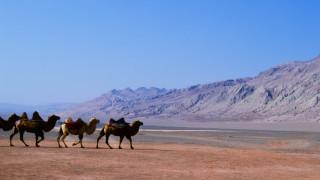 Китай превръща най-голямата си пустиня в оазис с 1000-километров водопровод