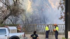 Петима ранени и стотици евакуирани заради горски пожари в Италия
