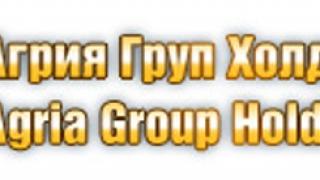 Загубата на Агрия Груп Холдинг АД покачи до 357 хил. лв. в края на юни