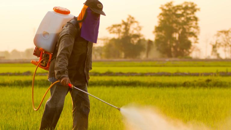 Над 25 тона нелегални пестициди са задържани у нас за 2020 г.