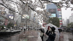 Япония засилва контрола върху закупуването на земя от чужденци