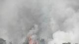 Пожар пламна в Бургас