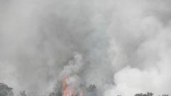 Голям горски пожар избухна в Бобошевско