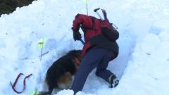 Планински спасители помогнаха на пострадал в района на Безбог