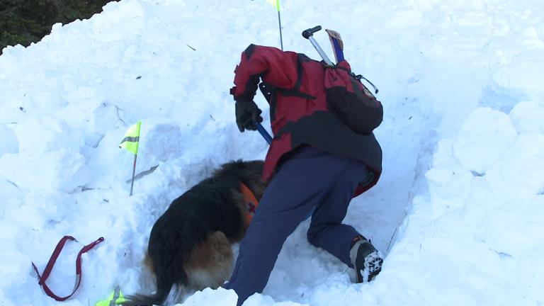 Спасиха сноубордист, затрупан от лавина в Пирин